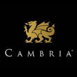 cambria new